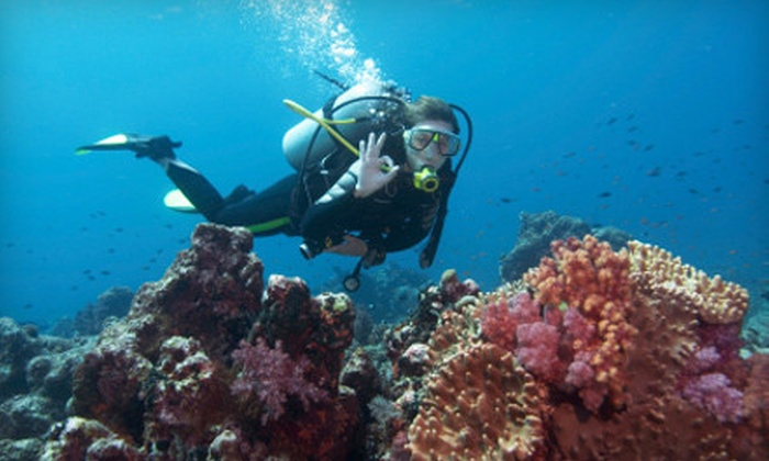 Private Scuba Lessons - Multiple Locations: Discover Scuba Intro Class for Two or Four from Private Scuba Lessons (Up to 66% Off)