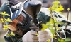 Combat Zone Paintball Las Vegas - Enterprise: $29 for a Paintball Outing for One with Equipment Rental and 500 Paintballs at Combat Zone Paintball (Up to $60 Value)