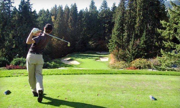 AW Golf Solutions - De Winton: $85 for Two Private Golf Lessons from AW Golf Solutions ($170 Value)