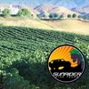 Up to 45% Off Jeep & Wine Tour