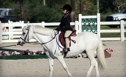 1 Horseback-Riding Lesson (a $50 value) - Acts 2 Acres Equestrian Center in Coconut Creek