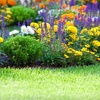 Up to 54% Off Weed-Control Treatments
