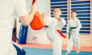 Silva Taekwondo: 6 or 12 Taekwondo Classes with Free T-Shirt at Silva Taekwondo (Up to 87% Off)