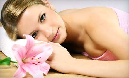 Spa Day Package for 1 Includes Massage, Facial or Body Scrub, and Paraffin Dip - Mezz Spa in Alpharetta