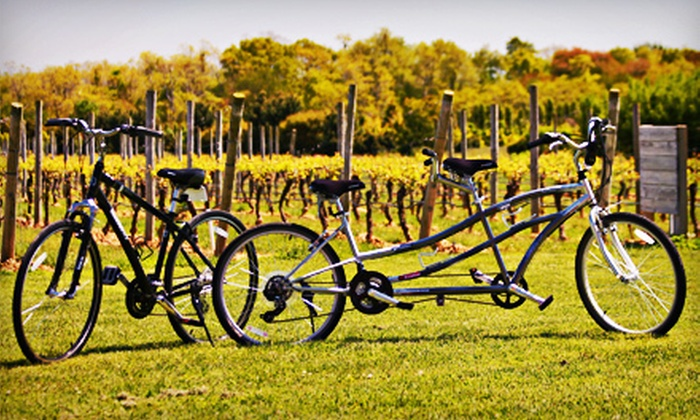 Vintage Bicycle Tours - Mattituck: À La Carte Tour or Signature Winery Bike Tour with Picnic Lunch from Vintage Bicycle Tours (Up to 53% Off)