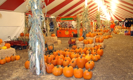 Nine Ride Tickets, Two Zoo Passes, and Zoo Food, or Birthday Party for 10 at The Pumpkin Factory (Up to 47% Off)