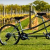 Up to 53% Off Winery Bike Tour in Mattituck