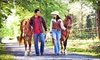 Rocking M Ranch - Garden City: Group Trail Ride for Two or Four or Private Trail Ride for Two at Rocking M Ranch (Up to 68% Off)