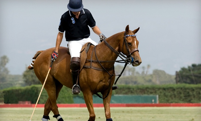 Hickory Hall Polo Club - Whitestown: $60 for One-Hour Private Polo Lesson at Hickory Hall Polo Club in Whitestown ($150 Value)