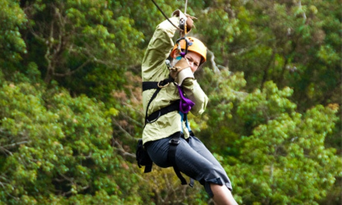 Wyman Center - Eureka: $25 for Three Hours of Ziplining, Wall Climbing, and Challenge Courses at Wyman Center in Eureka ($70 Value)
