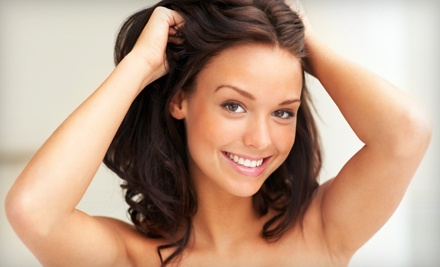 1 Blowout and Hairstyling Package (a $50 value) - Porcelain Hair Studio in Huntington Beach