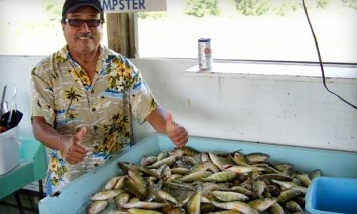 Stray Cat Charters - Luna Pier: $150 for a Perch or Walleye Fishing Trip for Two from Stray Cat Charters in Luna Pier ($300 Value)