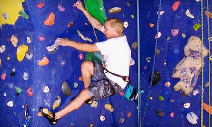 The Vertical Challenge - Monee: $9 for a One-Day Climbing Pass at Xtreme Plex's The Vertical Challenge in Monee ($20 Value)