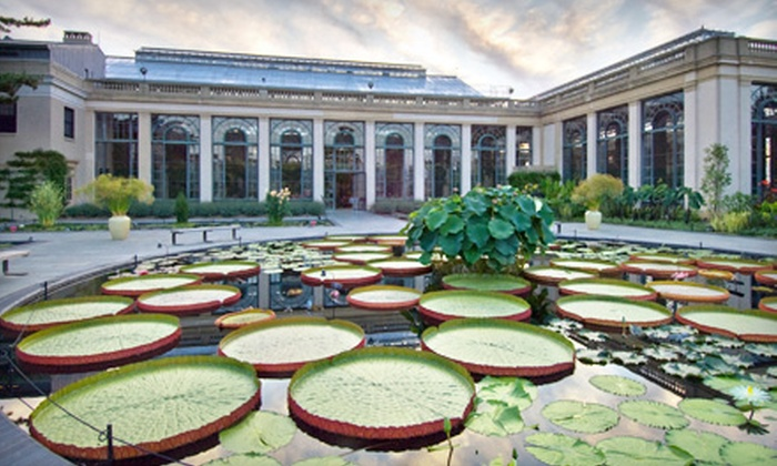 Longwood Gardens - Kennett Square: $9 for a One-Day Admission to Longwood Gardens in Kennett Square (Up to $18 Value)