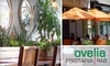 Ovelia - Astoria: $10 for $20 Worth of Modern Greek Cuisine at Ovelia