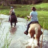 Up to 55% Off Horseback Trail Ride in Wickenburg