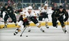 Chicago Wolves - Allstate Arena: Two Tickets to See the Chicago Wolves at Allstate Arena in Rosemont (Up to $38 Value)