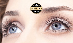 Prestige Beauty Bar: $19 Brow Thread & Tint + Lash Tint, $39 for Lash Extensions, or $49 for Both at Prestige Beauty Bar (Up to $131 Value)