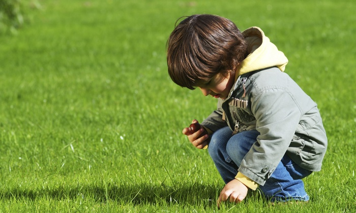 Lawn Doctor - Ankeny: $29 for a Lawn Fertilization and Weed Treatment from Lawn Doctor ($61 Value)