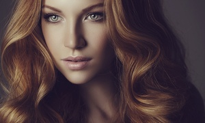Studio 360 Salon - Kathy & Brooke: Salon-Hair Service Package with Optional Highlights at Studio 360 Salon-Kathy & Brooke (Up to 52% Off)