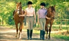 White Horse Equestrian - Streetsboro: 45-Minute Trail Ride for Two or Four, or One Season Pass to White Horse Equestrian (Up to 55% Off)