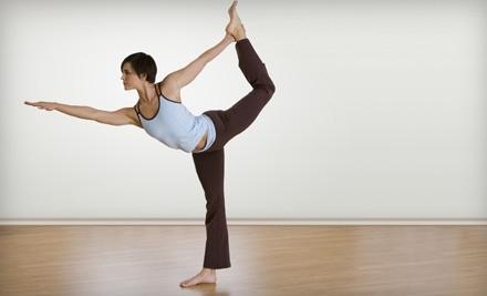 Yogani Studios - Yogani Studios in Tampa