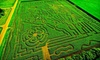 Lacombe Corn Maze Inc. - Lacombe: $6 for a One-Day Pass to Kraay Family Farm in Lacombe ($12 Value)