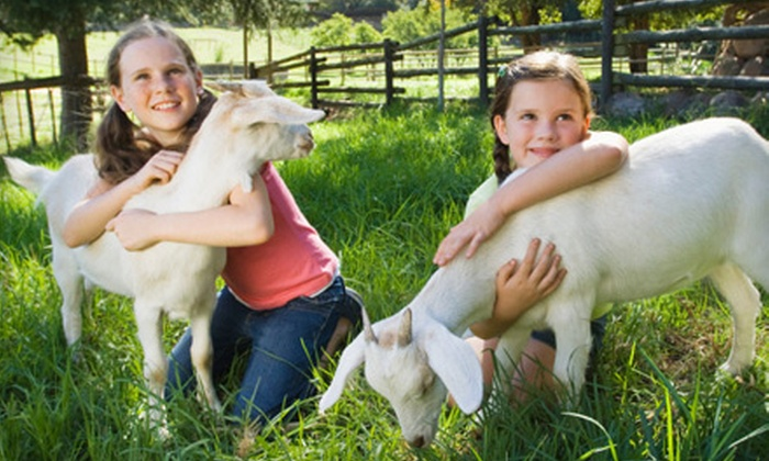 Green Meadows Petting Farm - Kissimmee: $10 for a Green Meadows Petting Farm Outing for One in Kissimmee (Up to $22 Value)