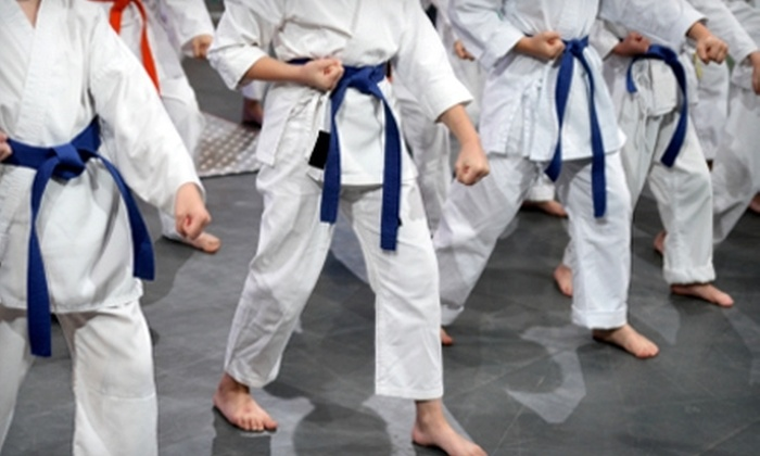 Colorado Taekwondo Institute - Multiple Locations: $49 for One Month of Classes and Uniform at Colorado Taekwondo Institute ($129 Value)