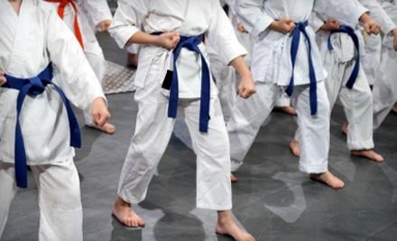 Colorado Taekwondo Institute - Colorado Taekwondo Institute in Lakewood