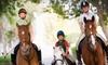Royal Winds Farm - Paris: Horseback-Riding Lessons at Royal Winds Farm in Paris (Up to 60% Off). Three Options Available.
