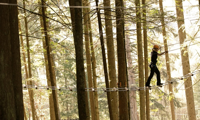 Sky Trek Adventure Park - Malakwa: High-Ropes Course and Adventure-Tower Experience for One or Two at SkyTrek Adventure Park (Up to 43% Off)