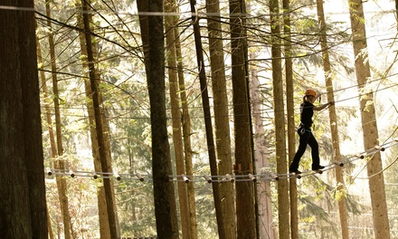 High-Ropes Course and Adventure-Tower Experience for One or Two at SkyTrek Adventure Park (Up to 43% Off)