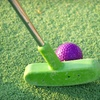 51% Off Mini-Golf and Pizza Package for Four