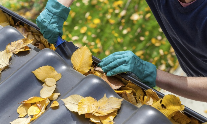 B.A. Commercial Maintenance - Atlanta: Roof-Maintenance Package with Gutter Cleaning from B.A. Commercial Maintenance (50% Off)