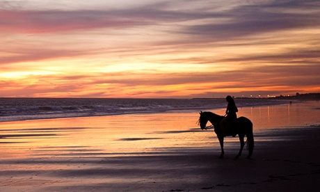 Paseo a caballo para 1 o 2 personas de 90 o 180 minutos por el Parque de Doñana desde 16,95€ con Rutas Ecuestres Mazagón