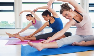 Shambhala studios: Five Pilates or Yoga Classes for One or Two at Shambhala Studios (Up to 76% Off)
