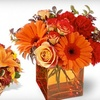 Half Off Exclusive Arrangement at Meridian Floral