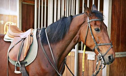 Miller Equestrian Services - Miller Equestrian Services in Escondido