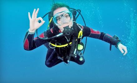 Dive Right In Scuba - Dive Right In Scuba in Plainfield