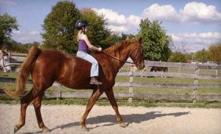 Trinity Farm: Two 1-Hour Horseback Riding Lessons - Trinity Farm in Clayton