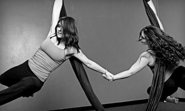 Infinity Dance and Wellness - Busch: Aerial Arts Classes or Pole-Dance Workshop at Infinity Dance and Wellness (Up to 59% Off). Four Options Available.