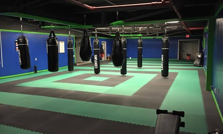 $30 for $66 Worth of Martial-Arts Lessons — KickFit