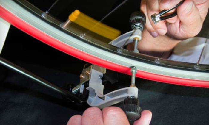 The Bike Lane - Bucktown: $39 for a Spring-Cleaning Tune-Up at The Bike Lane ($85 Value)