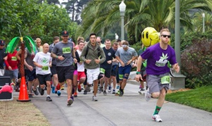 420Games.org: Golden Gate Park Run, Concert, and Beer Tasting for One or Two from 420Games.org (Up to 71% Off)