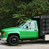 59% Off Junk Removal from 1-800-Junk-Hunk