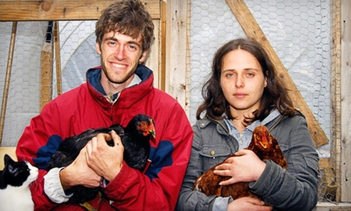 ioby - New York City: Donate $10 to Help ioby Volunteers Cultivate a Free-Range Chicken Coop and Produce Gardens on the Bushwick City Farm in Brooklyn