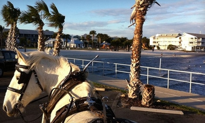Classic Carriages - Gainesville: $45 for a 30-Minute Carriage Ride in Downtown Cedar Key from Classic Carriages (Up to $95 Value)