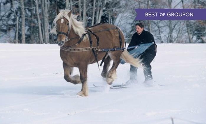 Auvergne :1 à 3 nuits en chalet, sauna jacuzzi, promenade à cheval, ski-joëring en option, au Village Equi-Nature pour 2