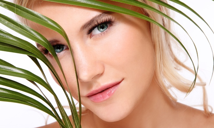 Institute Of Skin And Body - Sauganash: Facial with Optional LED Treatment or Microdermabrasion and Peel at Institute Of Skin And Body (Up to 68% Off)